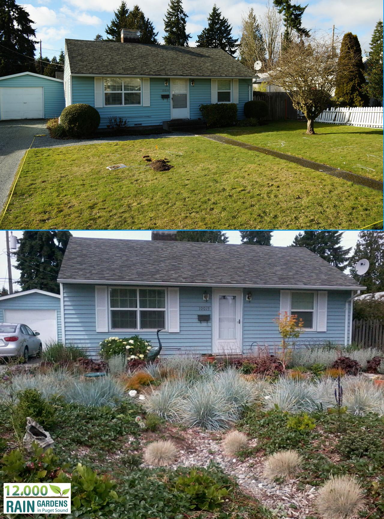 homeowners 12 000 rain gardens
