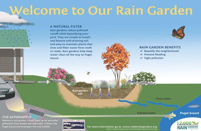 About Rain Gardens 12 000 Rain Gardens