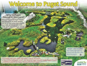 Puget Sound Rain Garden Sign