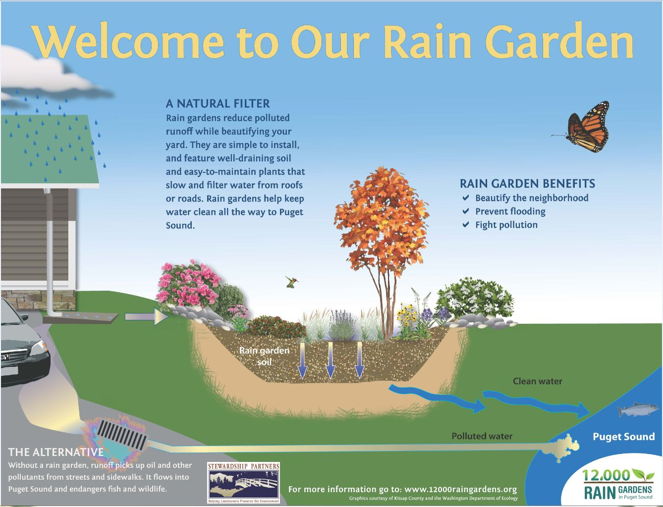 Resource Library 12000 Rain Gardens
