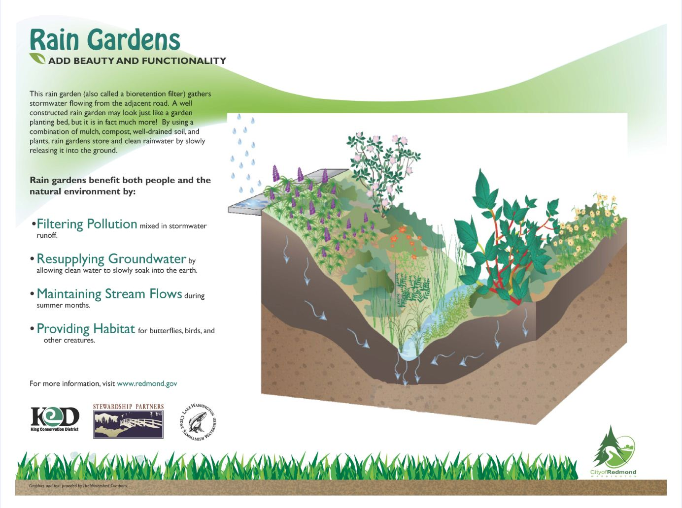 Resource Liry | 12,000 Rain Gardens on rain art drawings, rain gutter downspout design, dry well design, rain roses, rain water design, french drain design, rain construction, rain illustration, rain barrels, gasification design, bioswale design, rain gardens 101, rain harvesting system design,