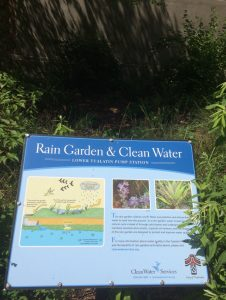 Rain Garden Sign from Oregon