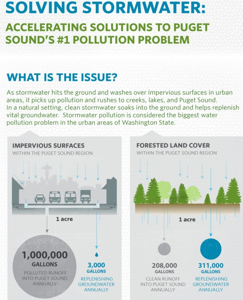 Solving Stormwater Infographic