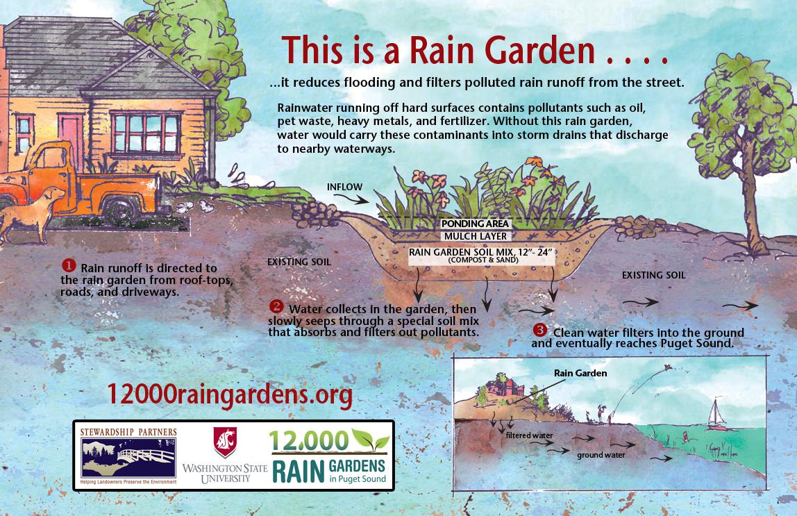 Resource Liry | 12,000 Rain Gardens on coastal garden design, urban garden design, rural garden design, rain garden design,