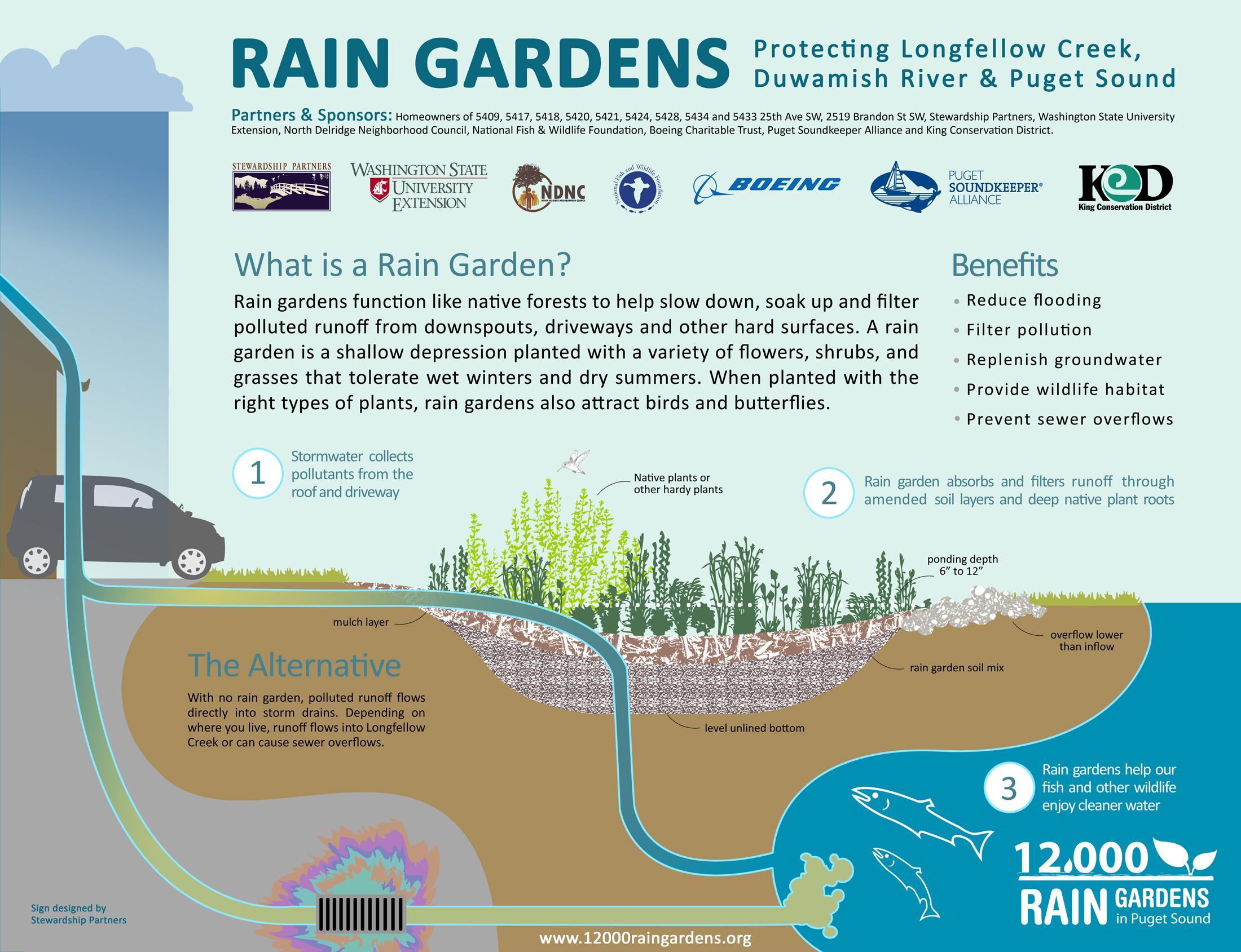 Resource Library  10,10 Rain Gardens
